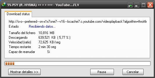 Descargar Videos de Youtube con Internet Download Manager