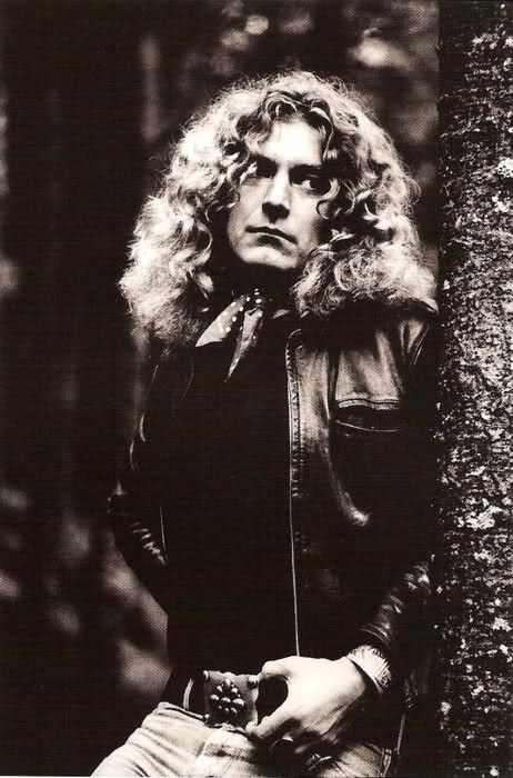 robert plant photographed recently - 462×700